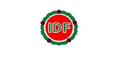 Integrated Development Foundation (IDF)